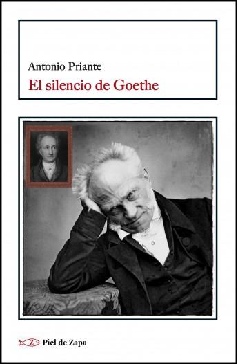 El silencio de Goethe